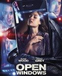 Open Windows (Pogrešan prozor) 2014