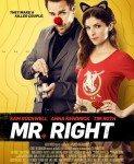 Mr. Right (2015)