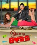 You're My Boss (Ti si moj šef) 2015